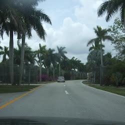 Zoo Miami's profile photo