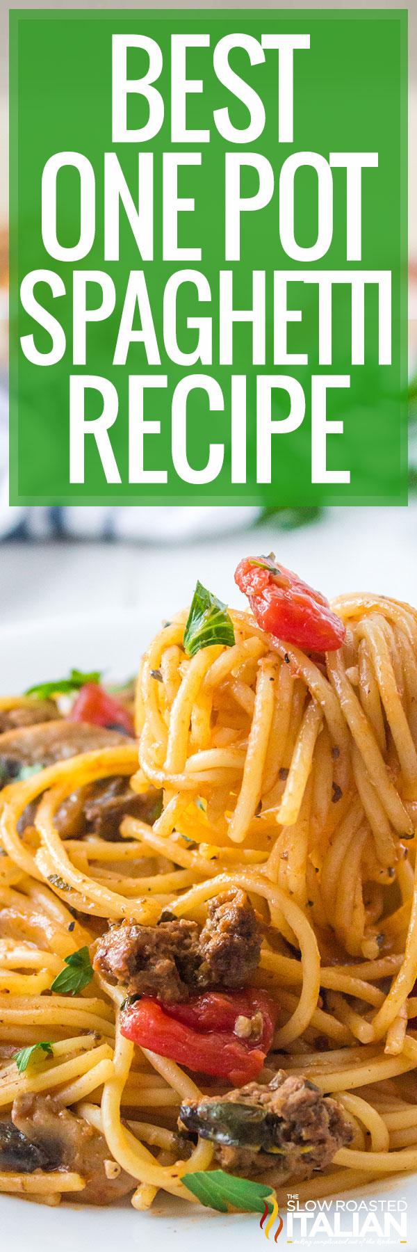 A plate full of Best One Pot Spaghetti Recipe
