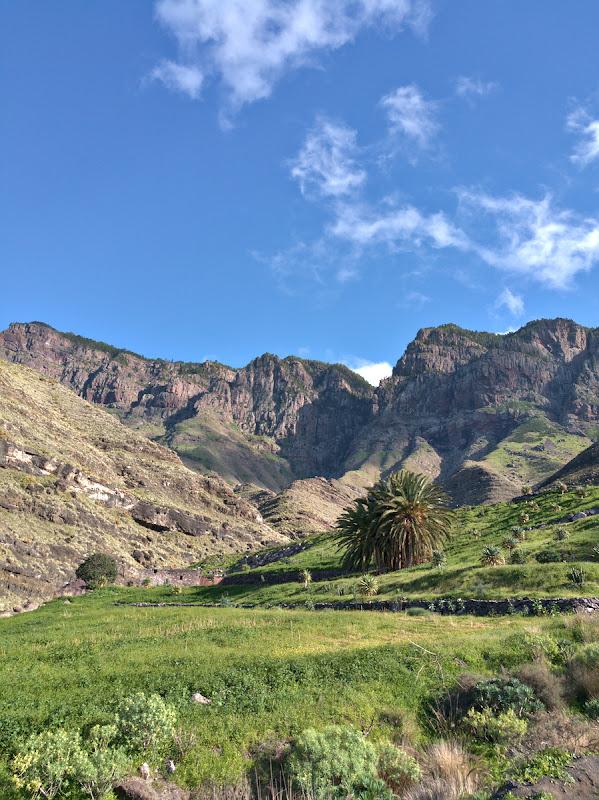 Verde de Canaria.