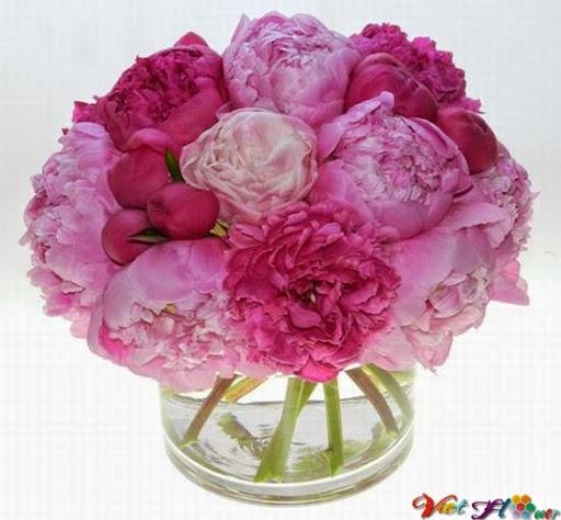 cắm hoa tình mẹ