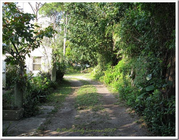 02-04-driveway
