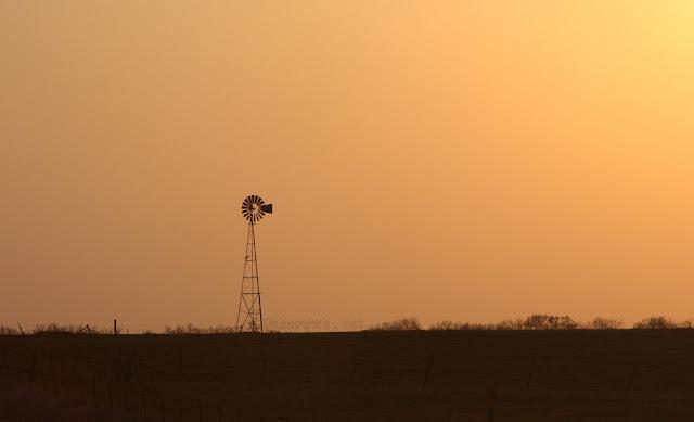 Windmill at Dusk_5703280761_l