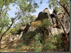 170529 006 Fitzroy Crossing Geikie Gorge NP