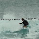 _DSC2378.thumb.jpg