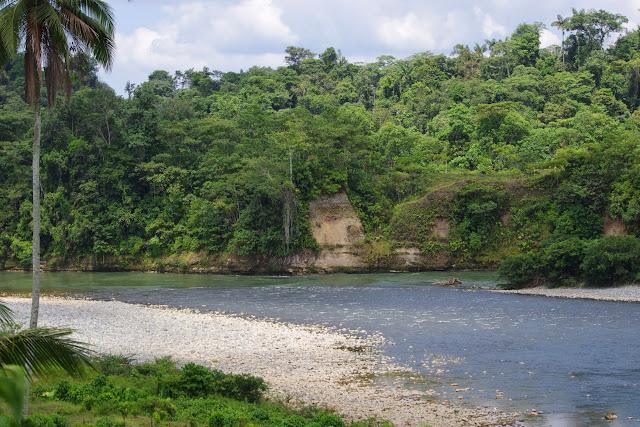 Le Rio Santiago au sud de Selva Alegre (San Lorenzo, Esmeraldas), 28 novembre 2013. Photo : J.-M. Gayman