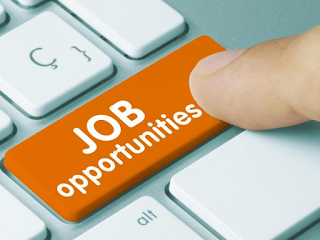 Government-job-opportunities