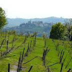 Barolo, Alba, Wine Trip