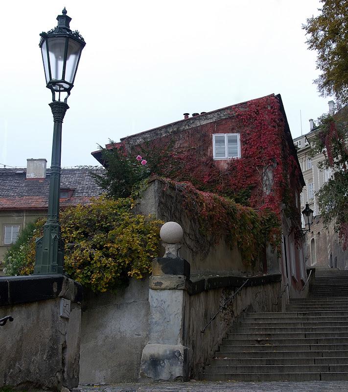 Old Castle Steps