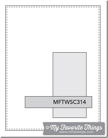 MFT_WSC_314