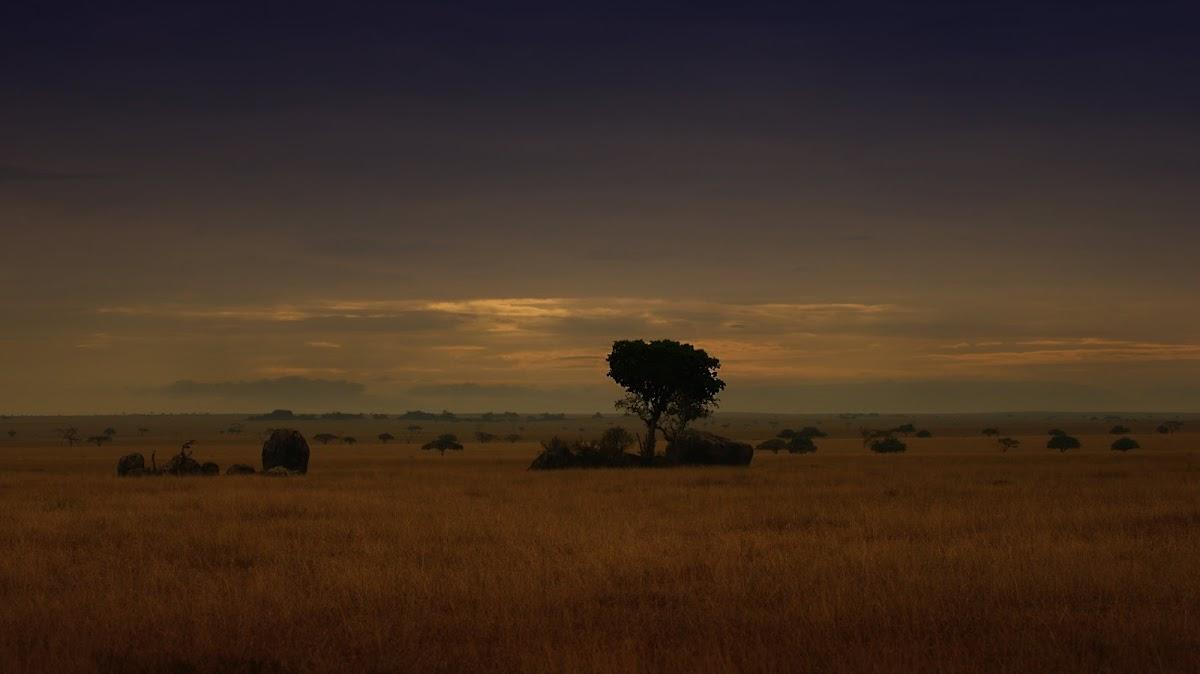 TanzaniaDSC03340.jpg
