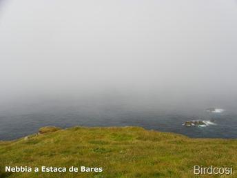 Nebbia a Estaca de Bares