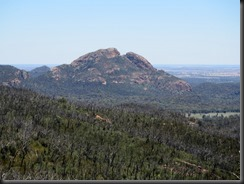 171107 073 Warrumbungles Whitegum Lookout