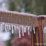12-06-13 DFW Ice Storm - IMGP5453.JPG