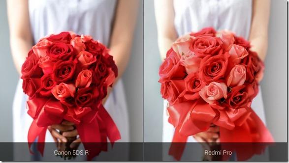 Sampel Foto Xiaomi Redmi Pro