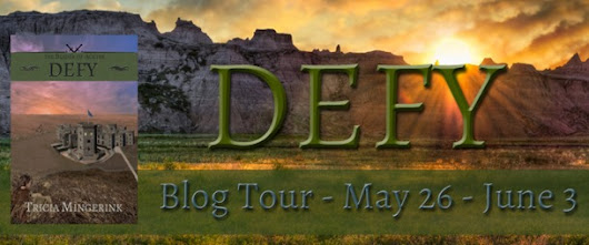 Defy Blog Tour–Review