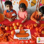Orange Day (Jr.KG.) 03-8-2017