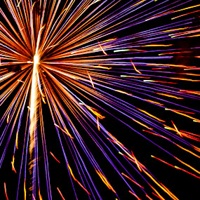 STARBURST by Jennifer  Loper  - Public Holidays July 4th ( red, blue, yellow, july 4, purple, redblack, fireworks )