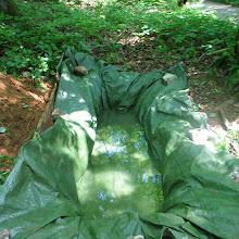 Taborjenje, Lahinja 2005 1. del - img_0976.jpg