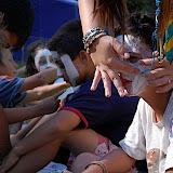 Campaments dEstiu 2010 a la Mola dAmunt - campamentsestiu204.jpg