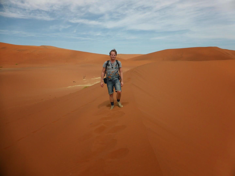 Op een duinrand (bij Dodevlei, Namib-Naukluft National Park in Namibië)