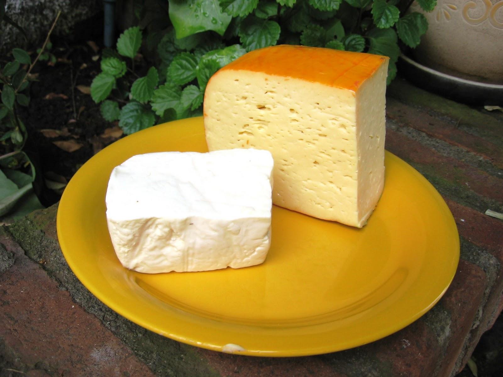 quesillo cheese