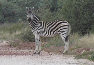 Sunday in Botswana
