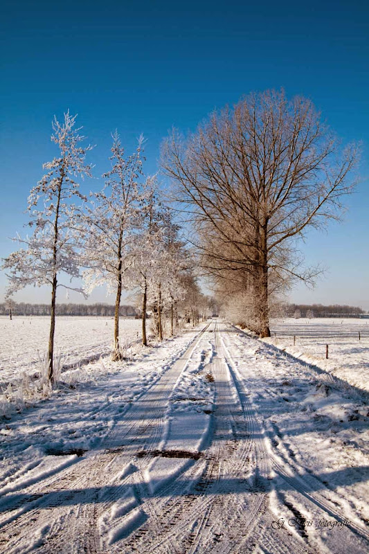 Winter - Winter-033.jpg