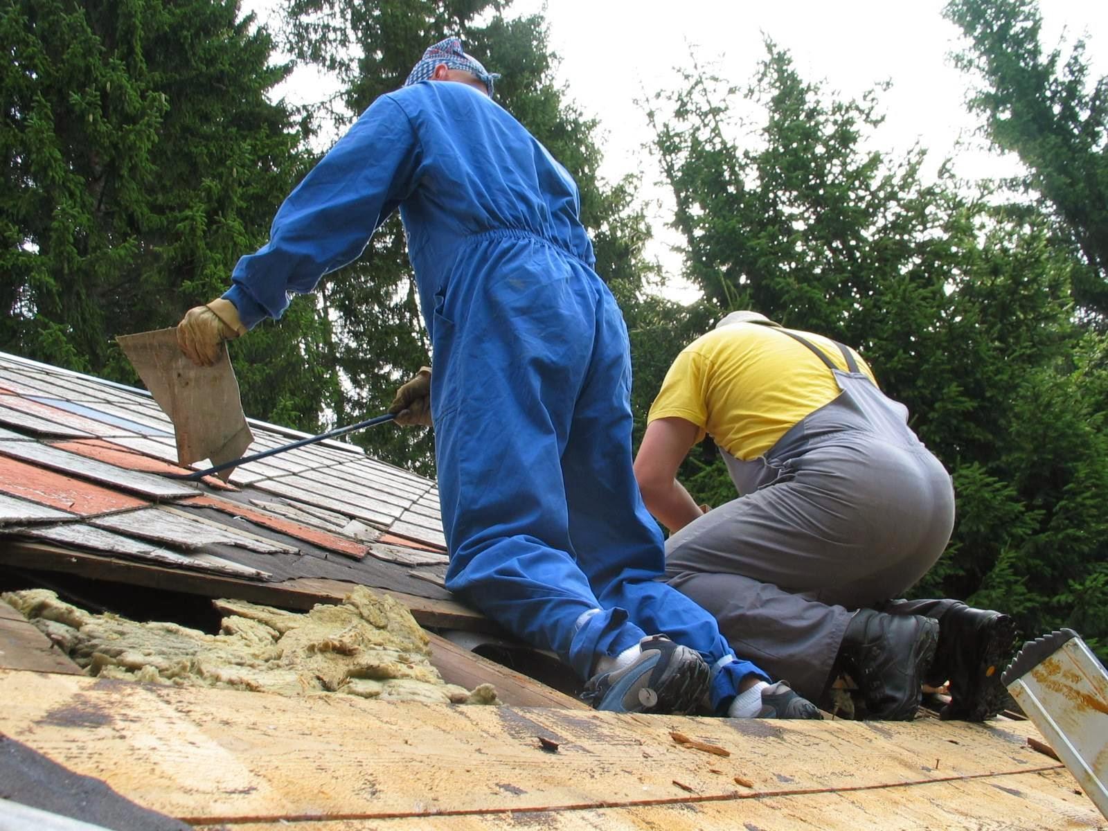 Delovna akcija - Streha, Črni dol 2006 - streha%2B030.jpg