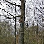 im U(h)rwald zu Jossa