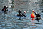 """Военные водолазы на учениях """"Си Бриз-2016"""" учатся управлять подводными роботами"""