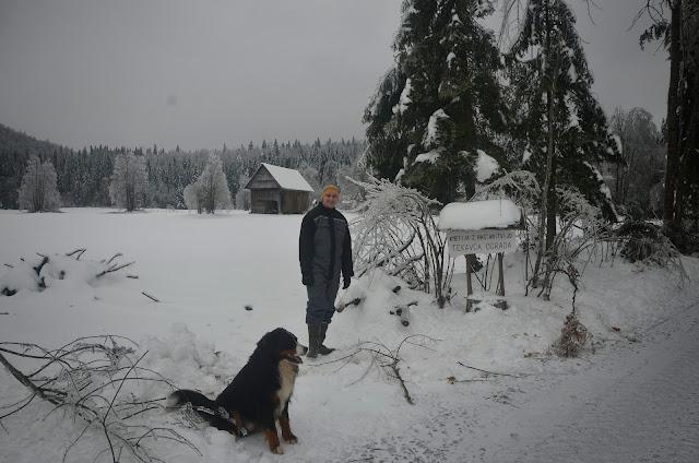 Zima-winter - DSC_3109.jpg