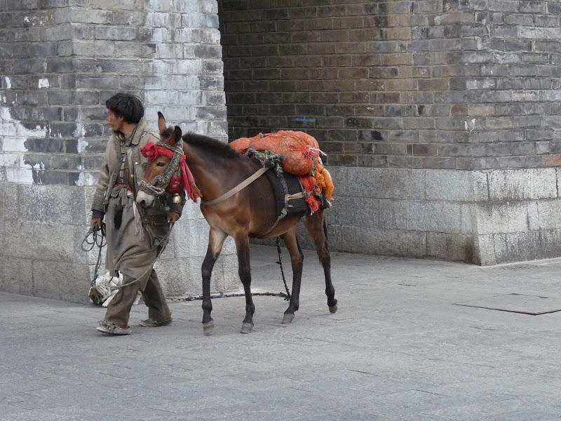 CHINE .Yunnan DALI 2 - P1170424.JPG