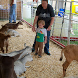 Fort Bend County Fair 2014 - 116_4342.JPG