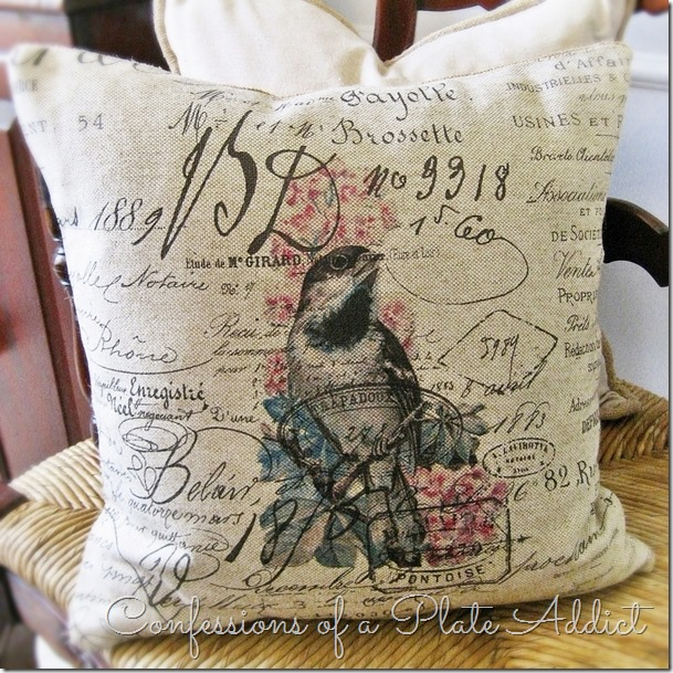 CONFESSIONS OF A PLATE ADDICT French Script Bird Pillow #1