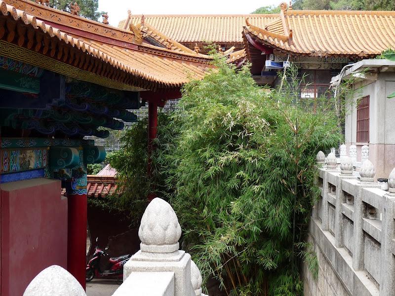 Chine .Yunnan . Lac au sud de Kunming ,Jinghong xishangbanna,+ grand jardin botanique, de Chine +j - Picture1%2B232.jpg