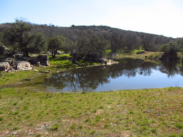 cattle pond