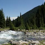 La rivière Kyzyl Aksuu, Kungej Alatau, Kyrgyzistan (5 juillet 2006). Photo : J.-M. Gayman