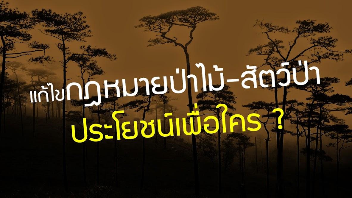 แก้ไขกฎหมายป่าไม้สัตว์ป่า