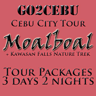 Cebu City + Moalboal + Kawasan Falls Nature Trek in Cebu Tour Itinerary 3 Days 2 Nights Package