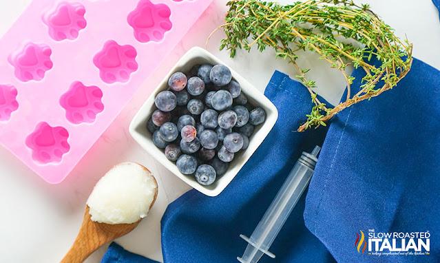 Frozen Blueberry Dog Treats ingredients