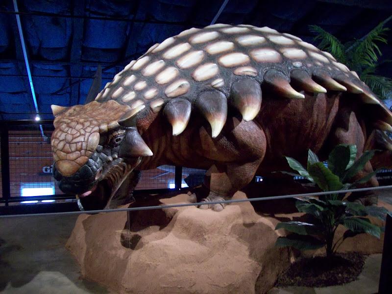 Houston Museum of Natural Science, Sugar Land - 114_6688.JPG