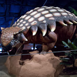 Houston Museum of Natural Science, Sugar Land - 114_6688.JPG