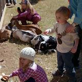 Blessington Farms - 116_5024.JPG
