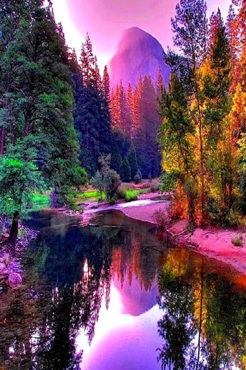 landscape007