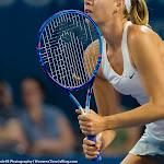 Maria Sharapova - Brisbane Tennis International 2015 -DSC_5569.jpg