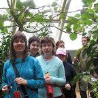 Botanická zahrada 2013 048.jpg