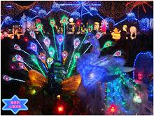 2013新竹燈會-孔雀花燈