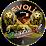 AssoMusicArt EVOLI FESTIVAL's profile photo