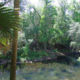 04-04-12 Hillsborough River State Park - IMGP9679.JPG