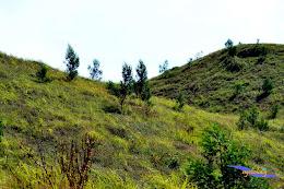 ngebolang gunung prau 13-15-juni-2014 nik 2 091